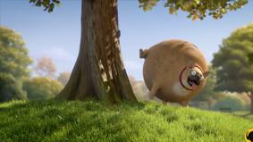 """《肥胖版国家地理》出新番,又一场动物世界的""""肉搏"""""""