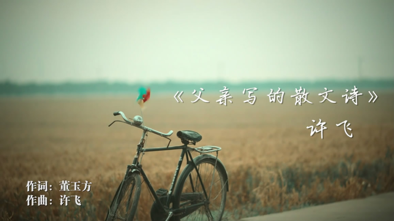 《父亲写的散文诗》许飞,平凡生活中的亲情回响