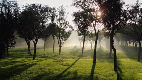 摄像自然光效的特征规律(室外自然光形态)