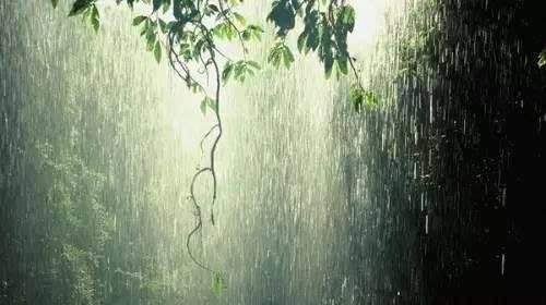 原来下雨天是摄影的绝佳时刻教你怎么拍