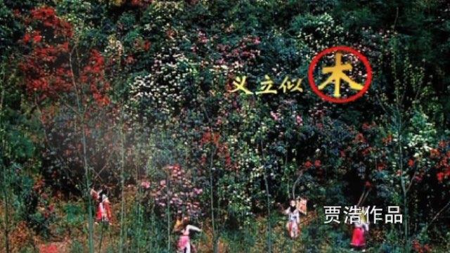 贵州卫视宣传片 《民族篇》