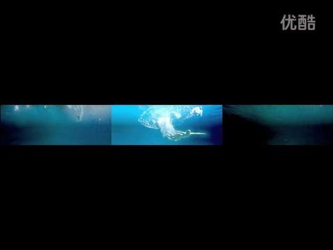 世博会中国馆纪录片 《历程》