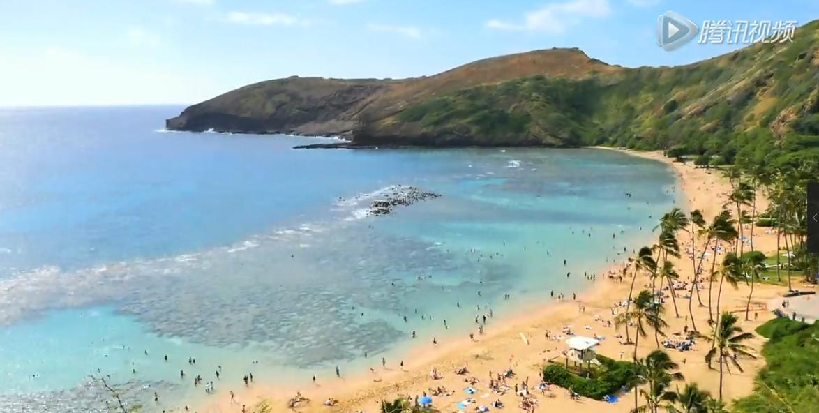 宣传片 《情迷夏威夷》