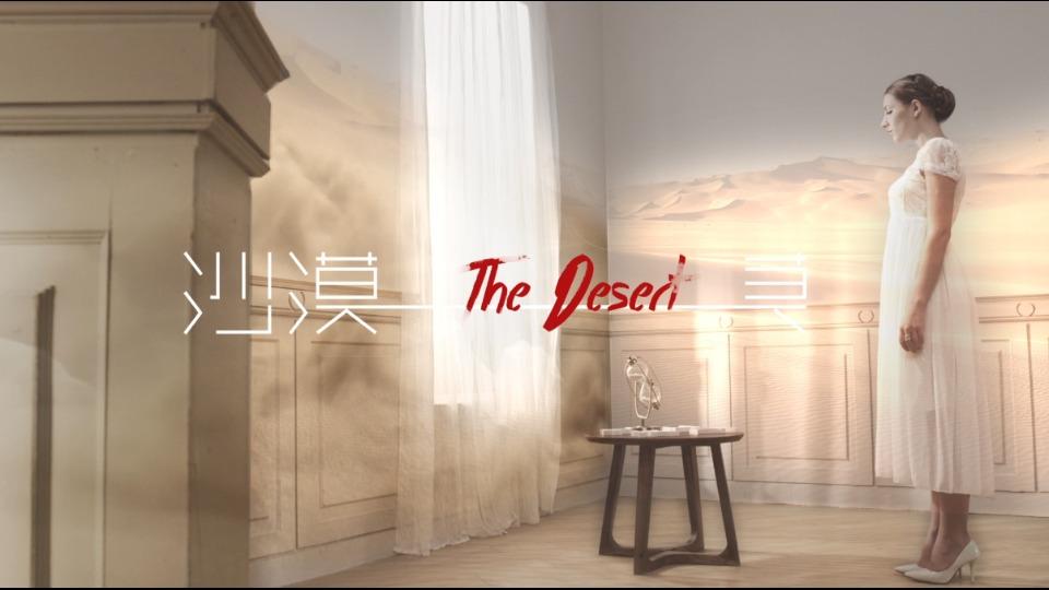 2015湖南卫视汉语桥概念宣传片