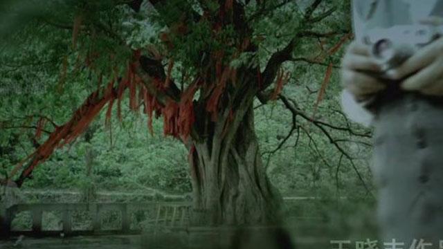 旅游宣传片 《重庆北碚》