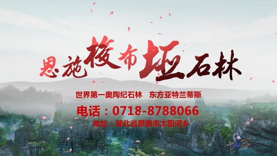 【广告片】恩施梭布垭石林15s广告